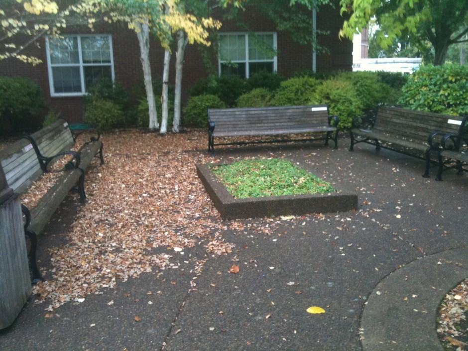 The benches of this small college campus would have been ideal for a small class, but the weather didn't cooperate.